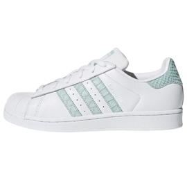 Vit Adidas Originals Superstar skor i CG5461