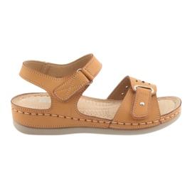 Brun Sandaler för kvinnor komfort DK 25131 kamel