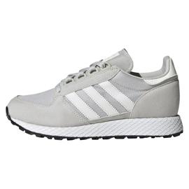 Grå Adidas Originals Forest Grove Jr EE6565 skor