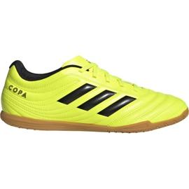 Adidas Copa 19.4 I M F35487 fotbollsskor