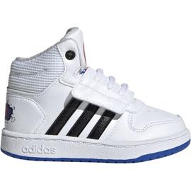 Vit Adidas Hoops Mid 2.0 I Jr EE8551 skor