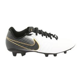 Fotbollskor Nike Tiempo Legend 7 Academy Fg M AO2596-100
