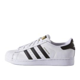 Adidas Originals Superstar Fundation Jr C77154 skor vit